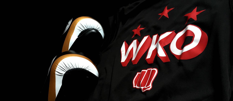 WKO Kickboxing in Llanelli.